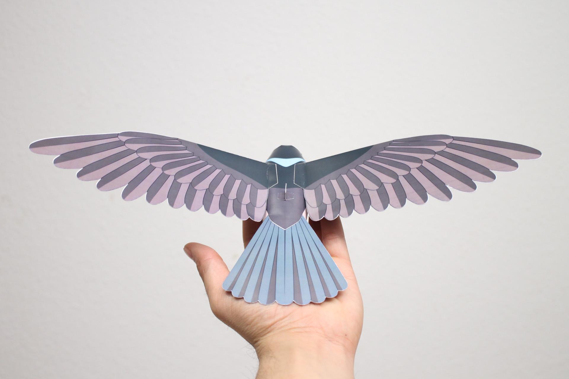 Prachtstaffelschwanz aus Papier